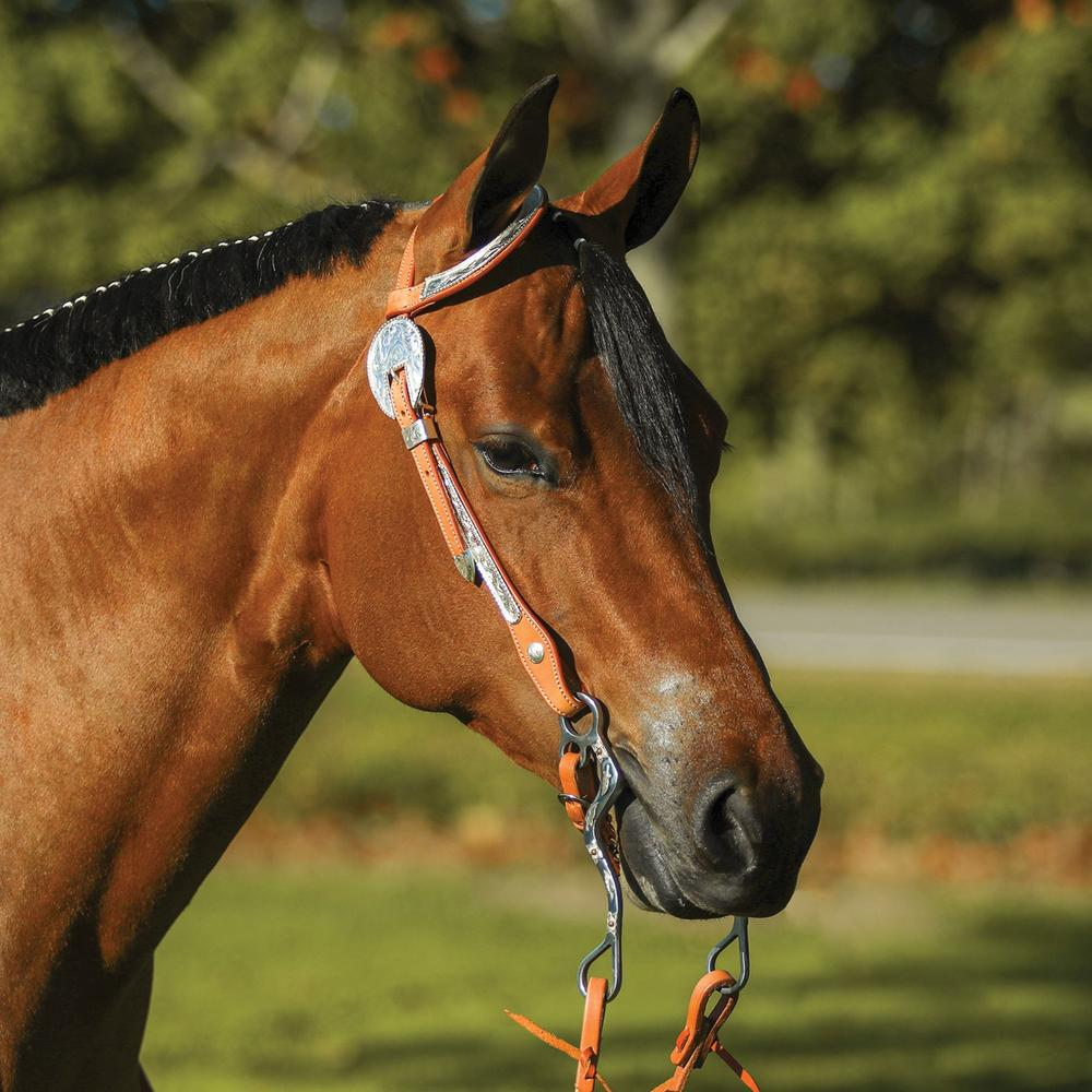 Raleigh Flat One Ear Silver Headstall
