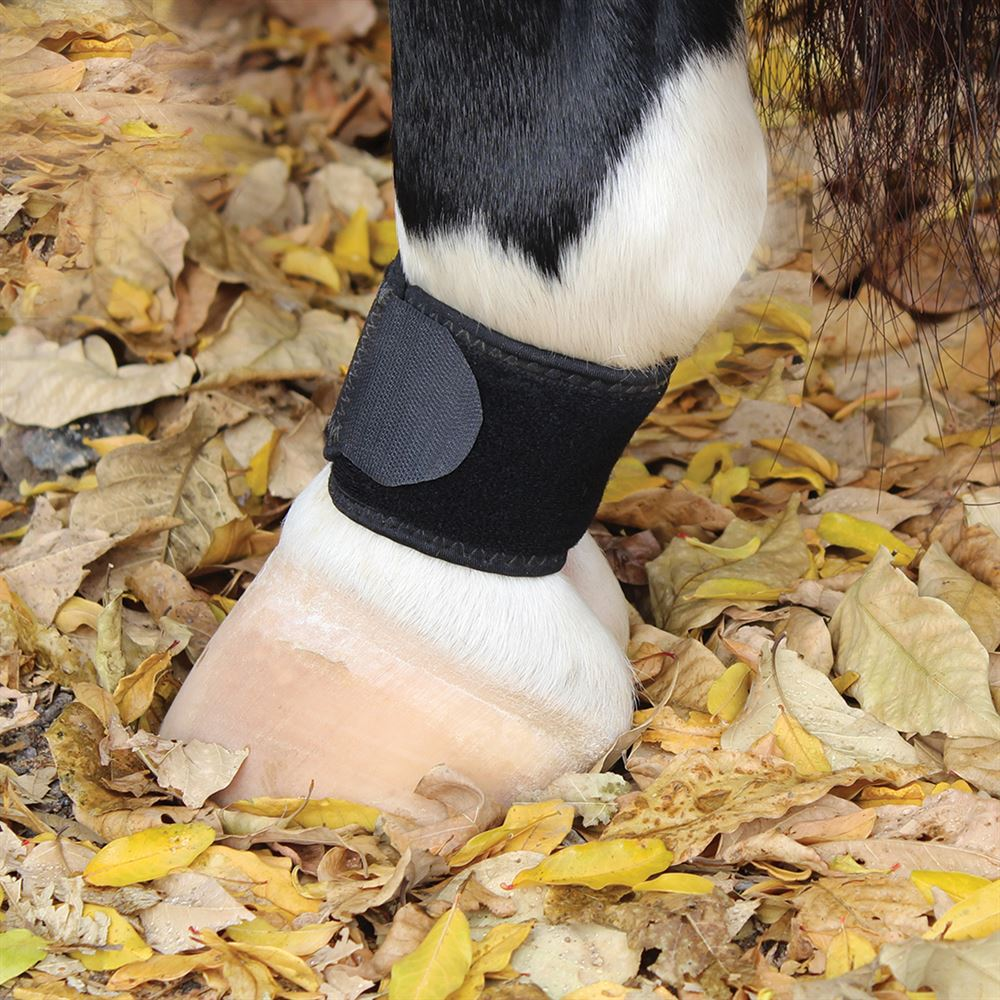 P CHOICE VENTECH PASTERN WRAP