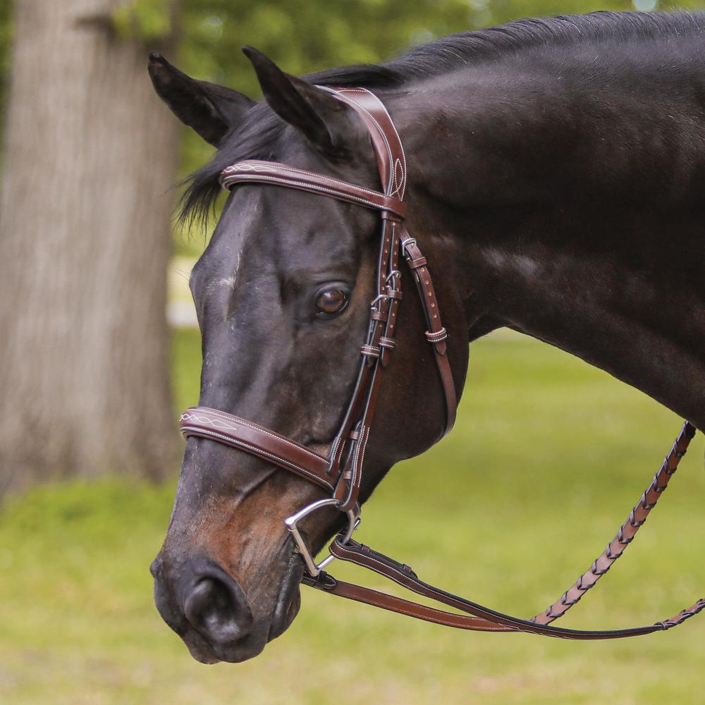 Joseph Sterling® Padded Poll Relief English Bridle