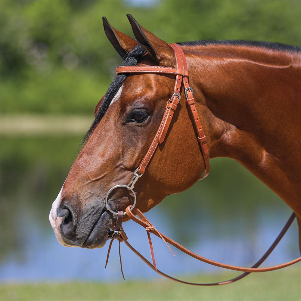 Double S Browand Training Bridle with snaps