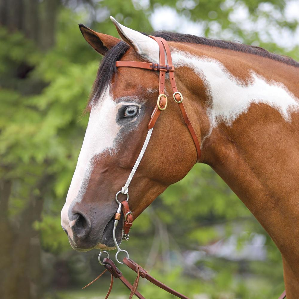 Double S Browband Headstall with Rope Quick Change Cheeks
