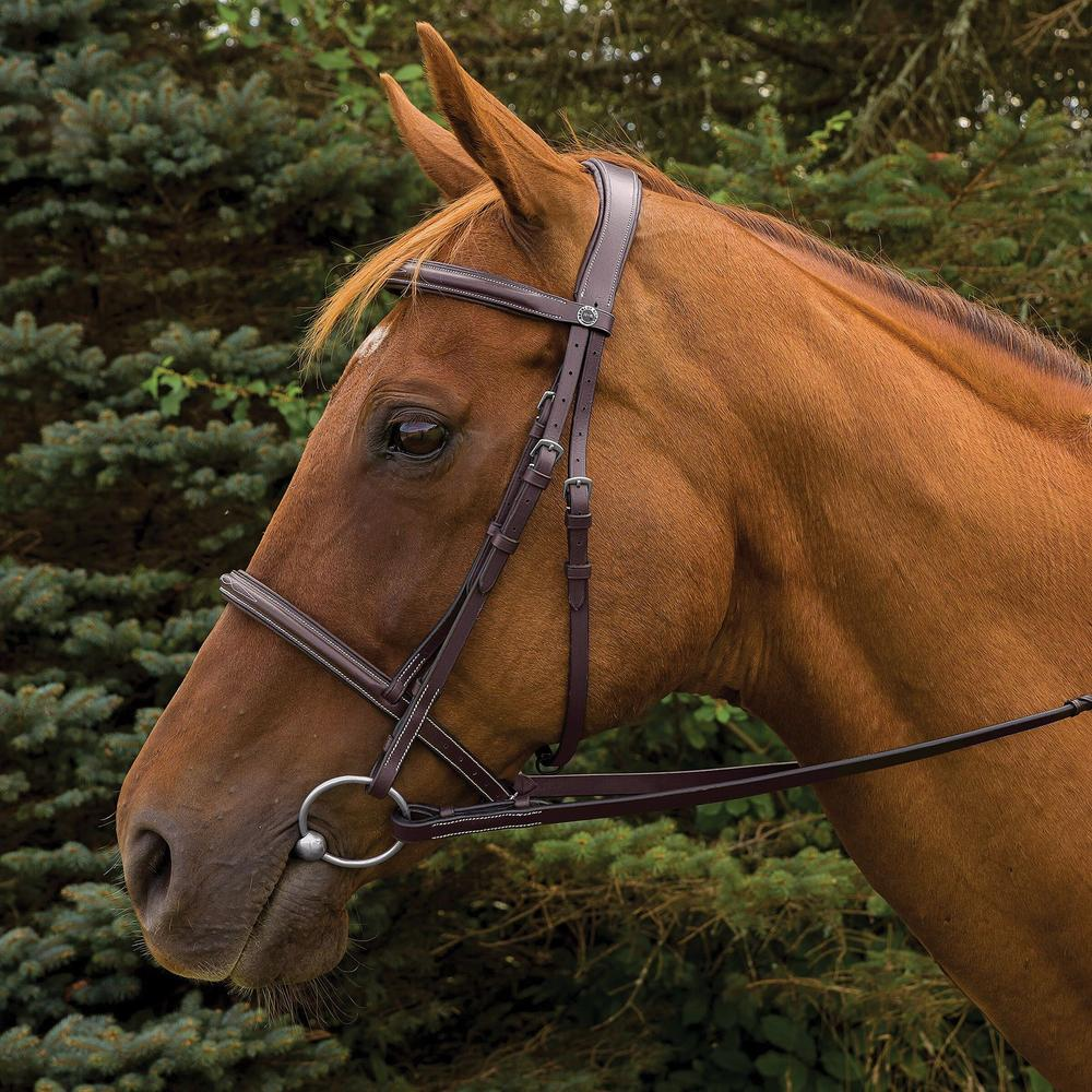 HDR Pro Mono Crown Fancy Stitched Padded Bridle