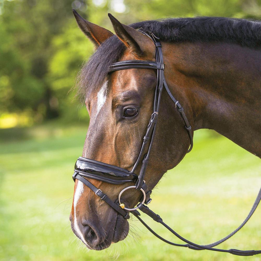 Pinnacle Rolled Patent Dressage Snaffle Bridle with Flash