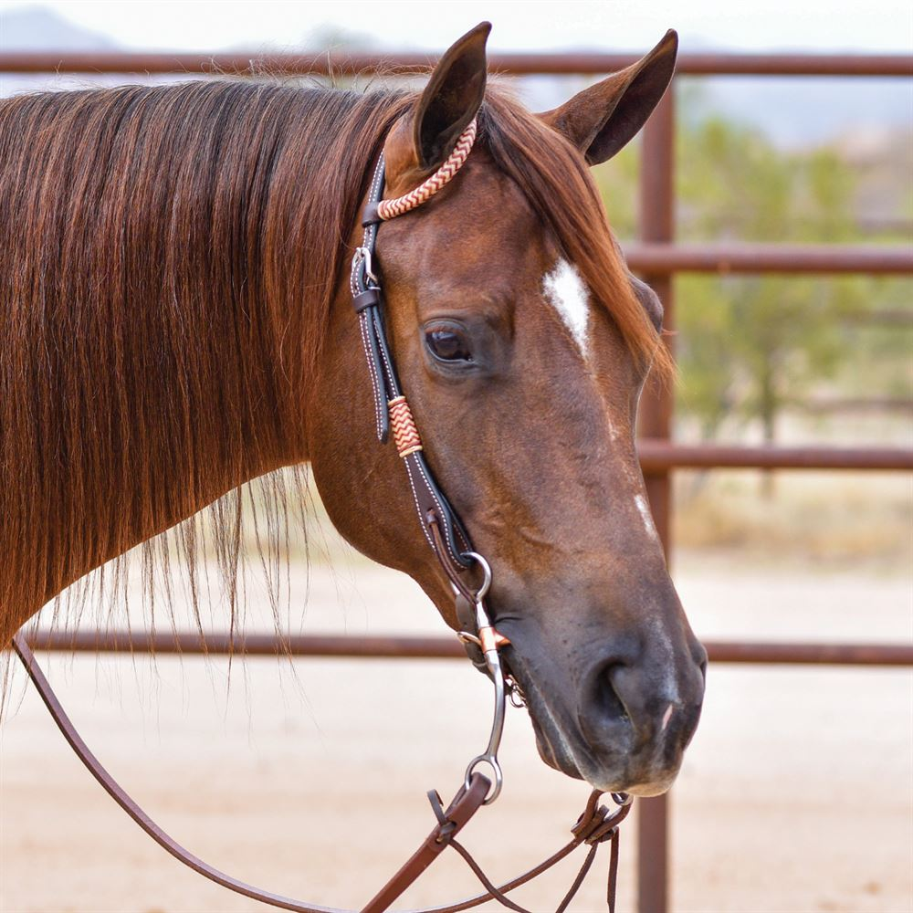 Double S Harness Leather One Ear Headstall