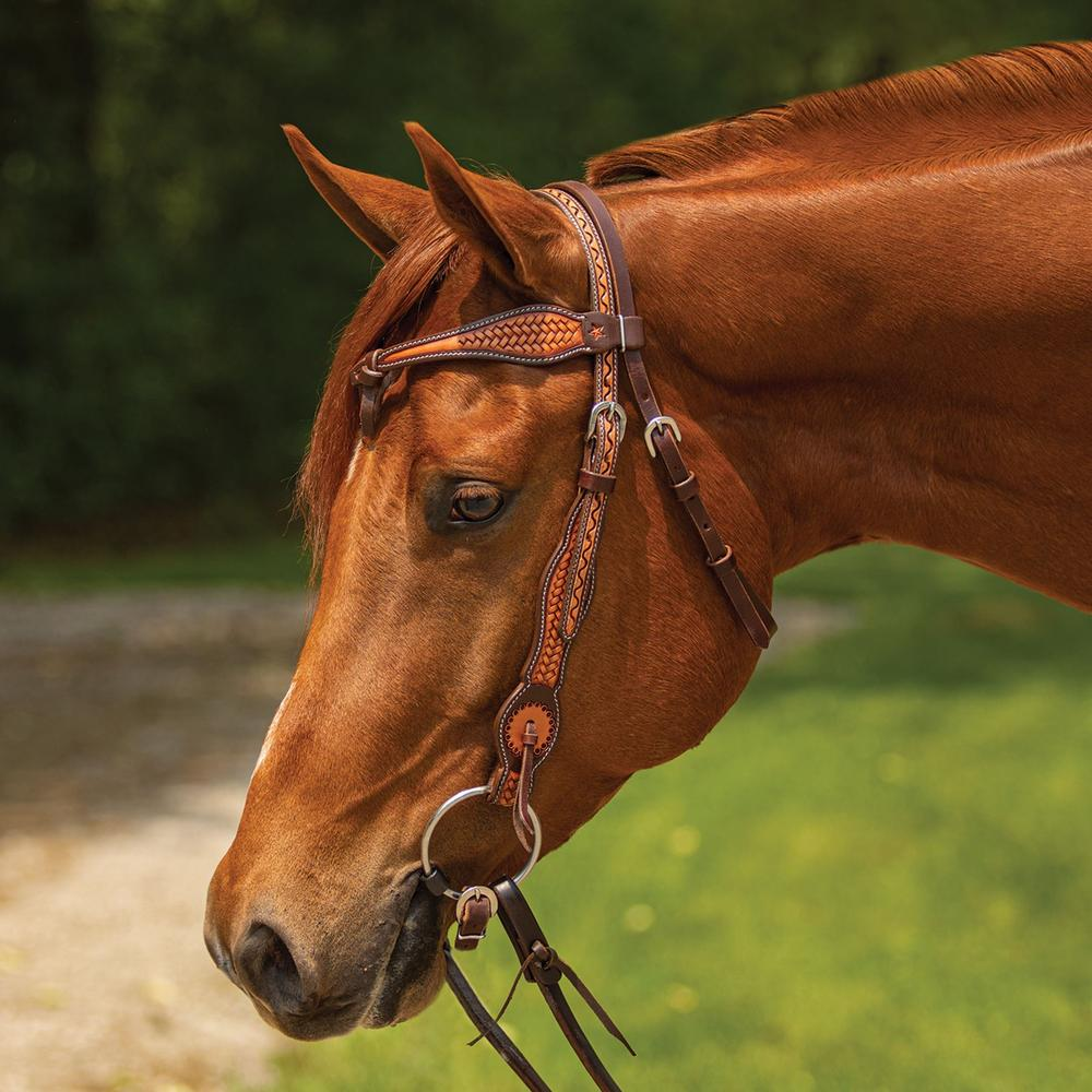 Double S Basketweave Futurity Browband Headstall