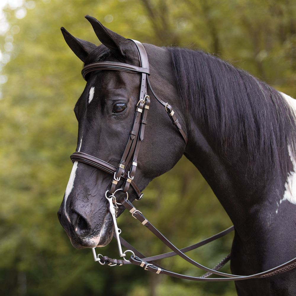 Pinnacle Show Hack Bridle