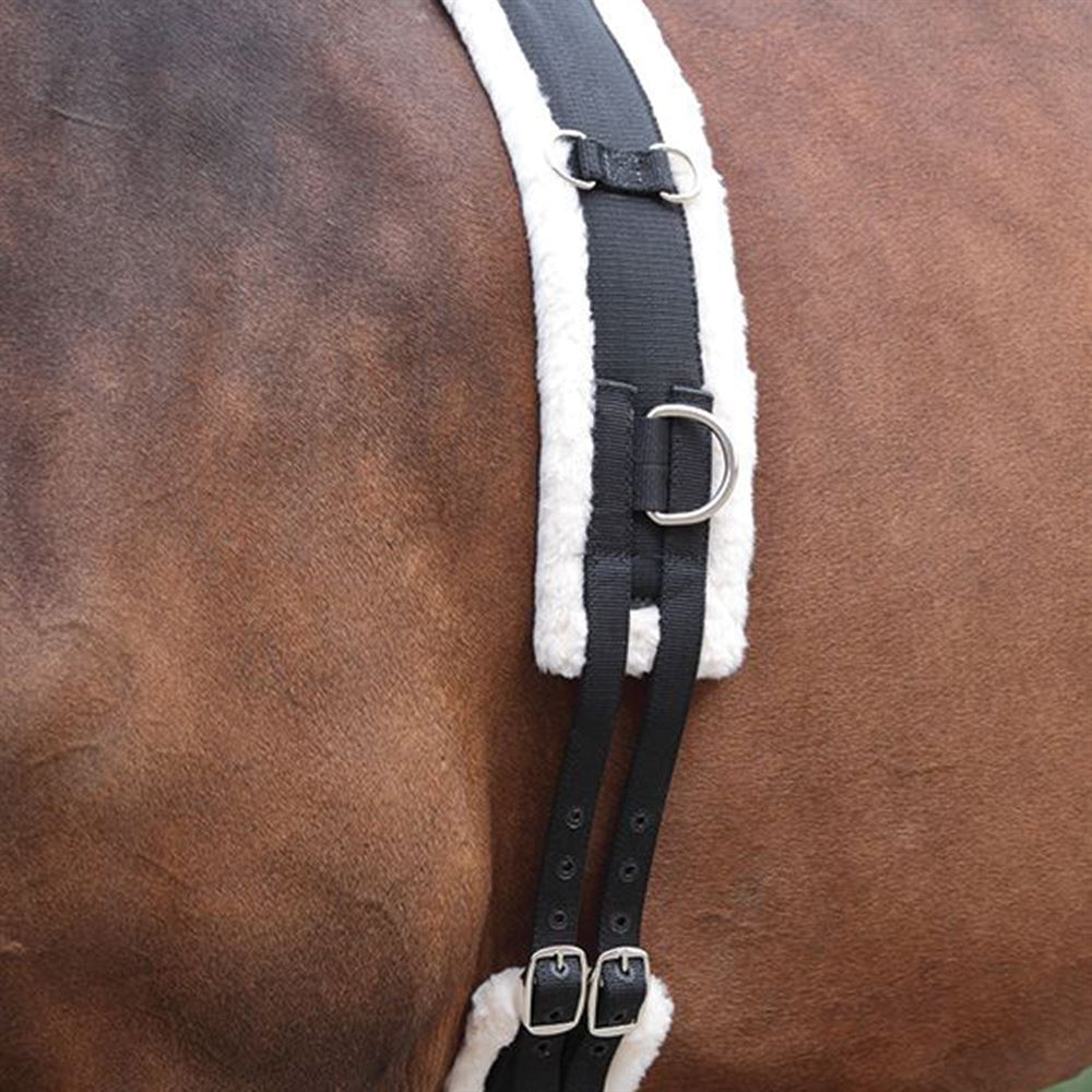 Shires Equestrian Nylon Roller with Fleece Lunge Surcingle