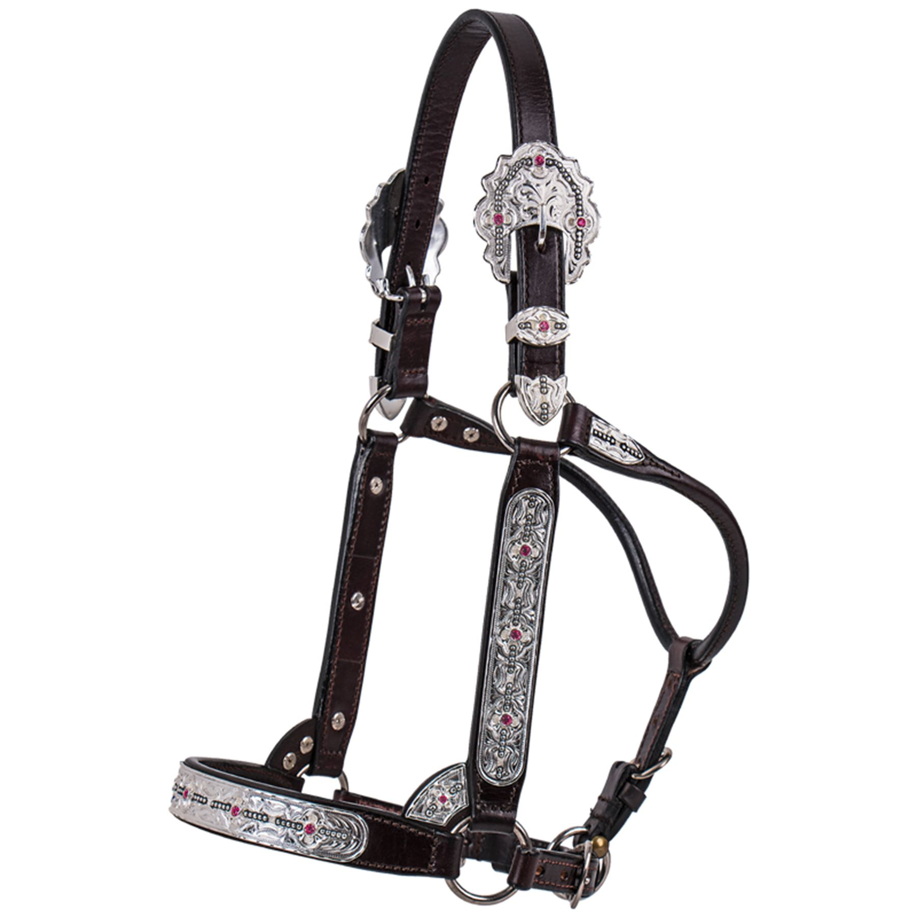 Leather And Silver Western Horse Show Halter With Matching Lead And Chain Halters