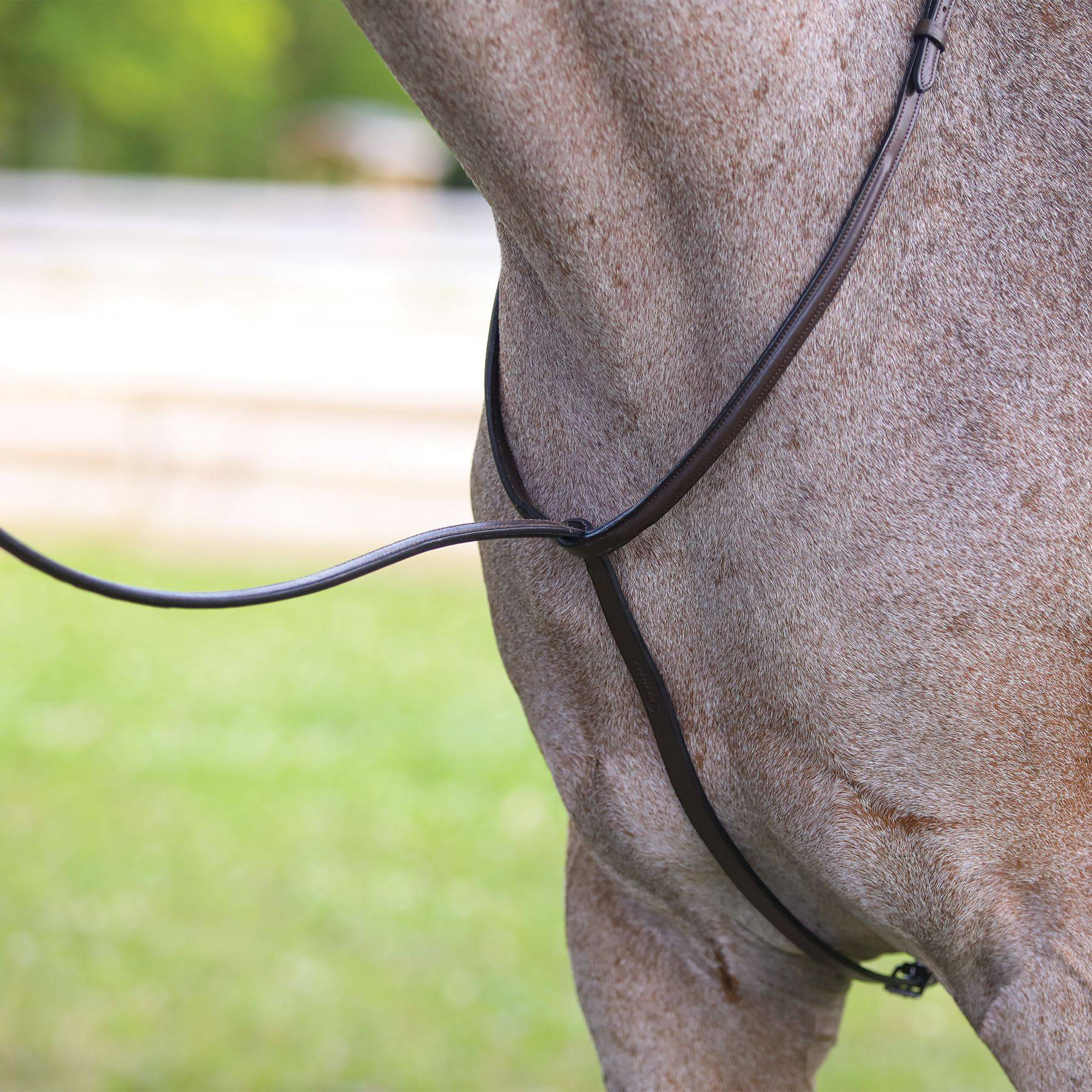 PROAM Fancy Stitched Standing Martingale