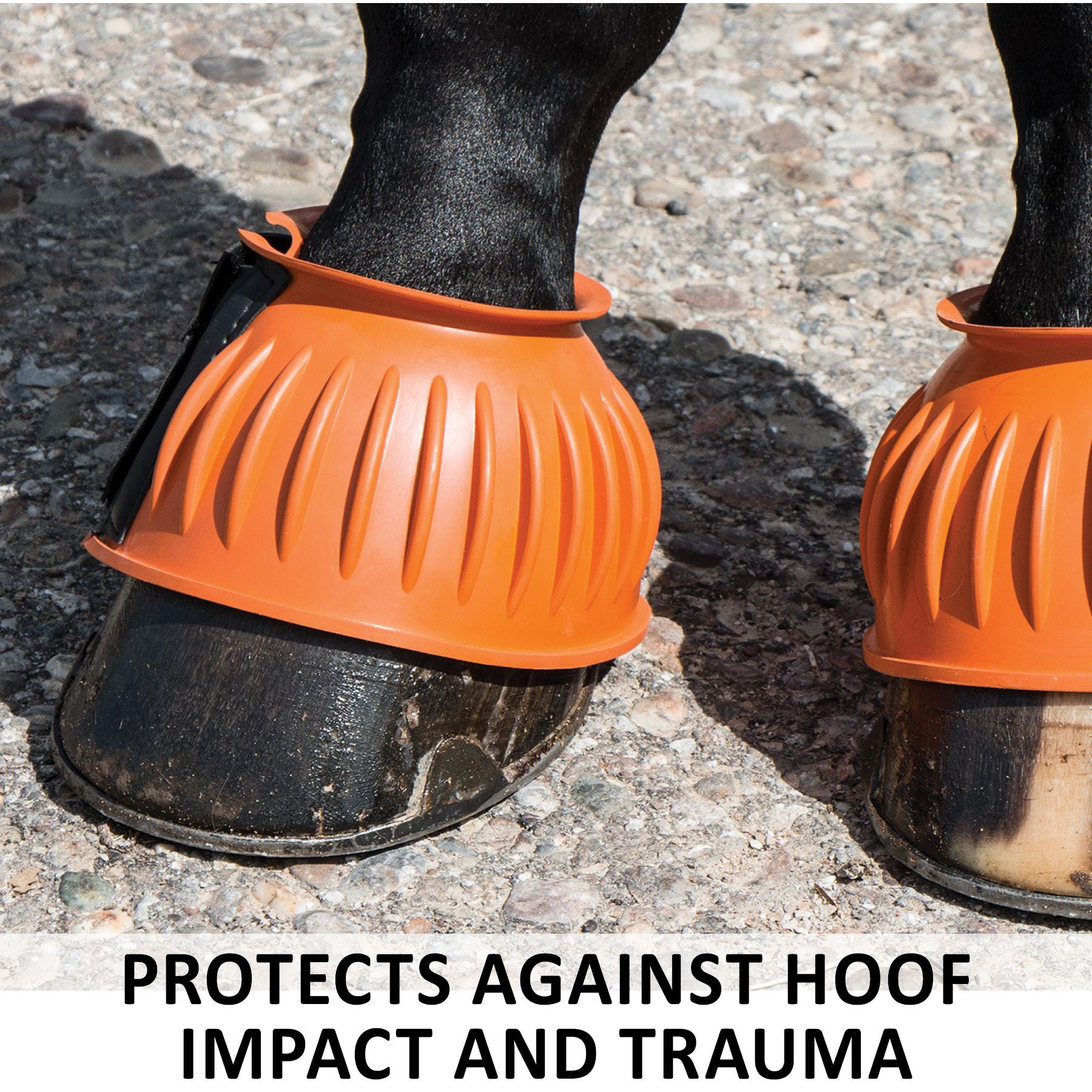 Thin Bottom, Shires Single Part Rubber Bell Boot