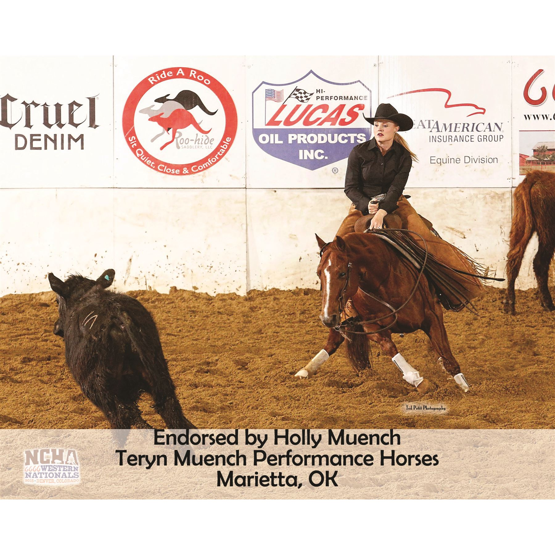 Horse Healing Therapy Pair Lux Ceramic Therapy® Quick Wraps