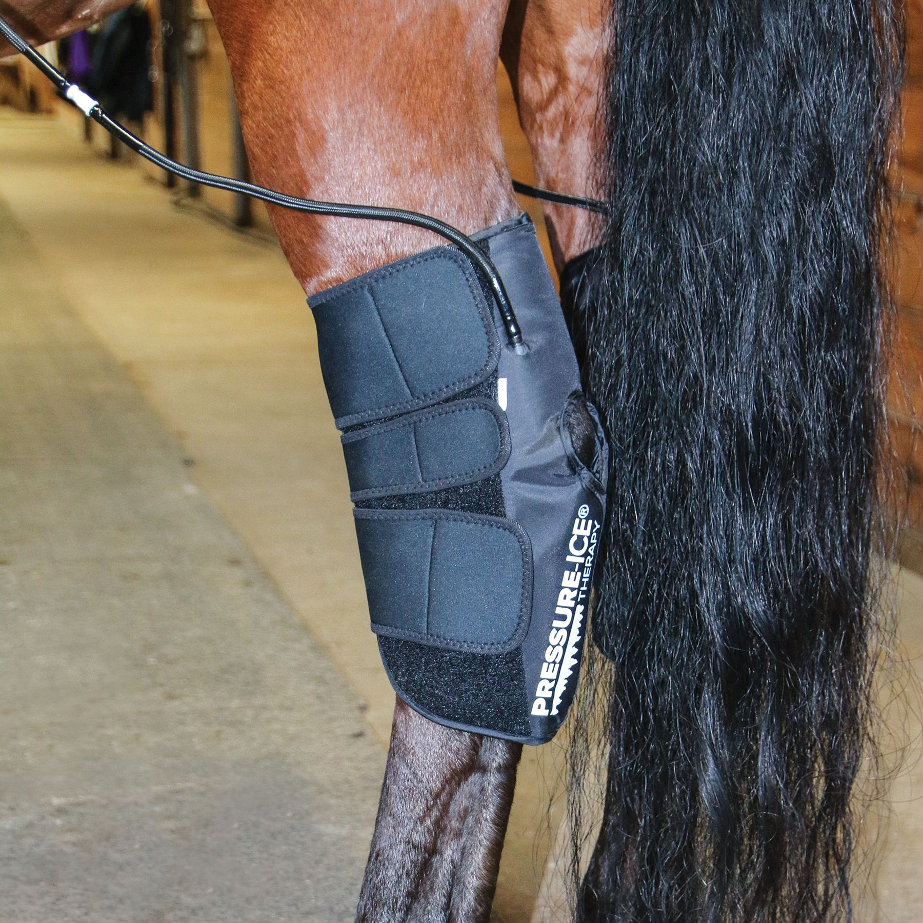 Horse Leg Protective Splint Ice Boot Ice Wrap Horse Equestrian Cold Cooling Pack