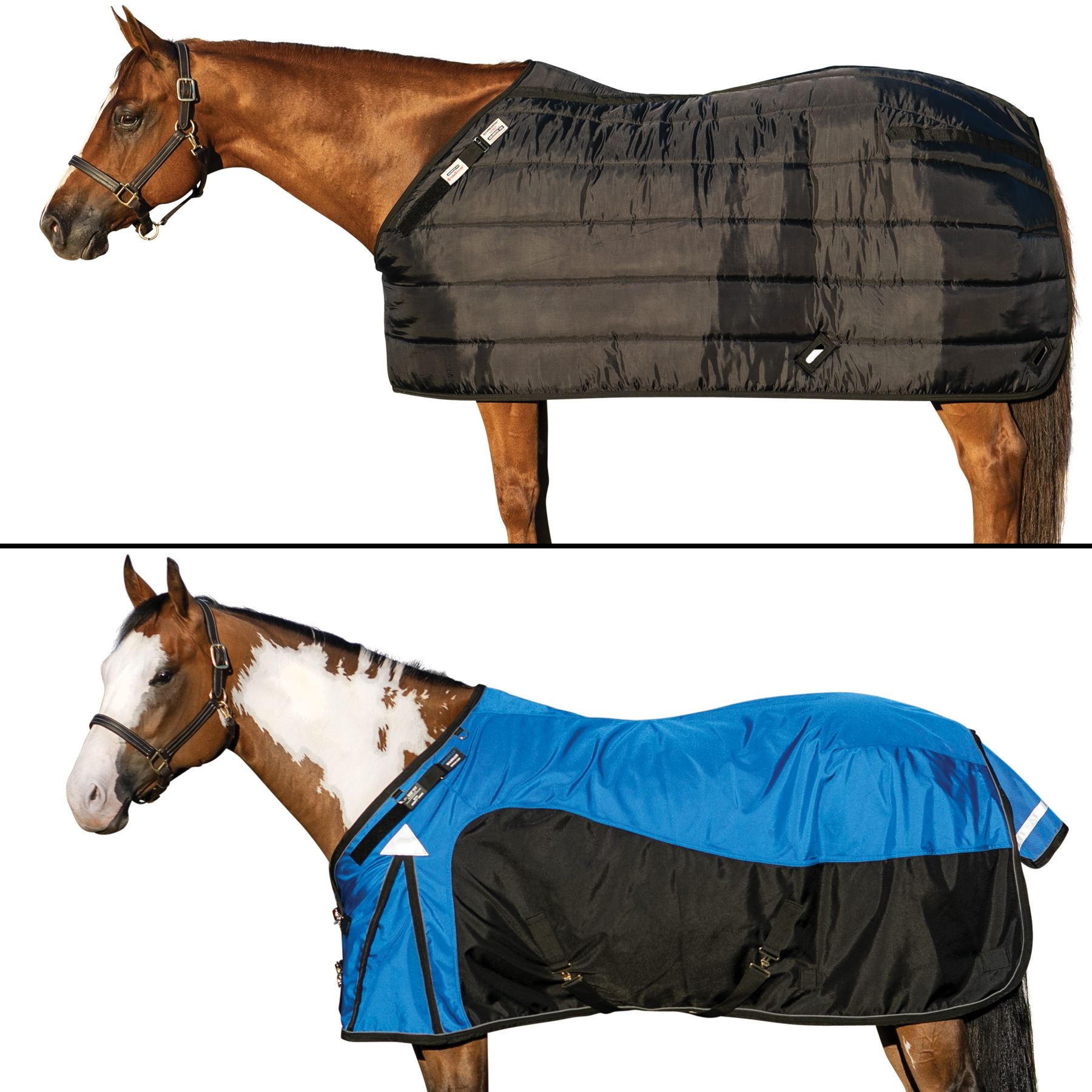 Adjustable Elastic Surcingle Choice of Color Equine Horse Blanket Accessories